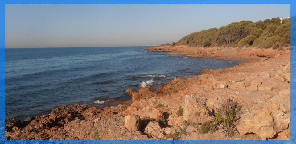 playa de la renega de oropesa del mar